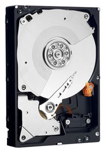 Фото: Жесткий диск HDD 1Tb Western Digital Caviar Black (WD1002FAEX) / 3,5""