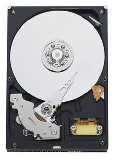 Фото: Винчестер IDE 250Gb Western Digital (WD2500AAJB)