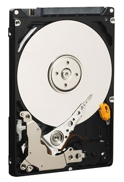 Фото: Жесткий диск HDD 320Gb Western Digital Black (WD3200BEKX) / 2,5